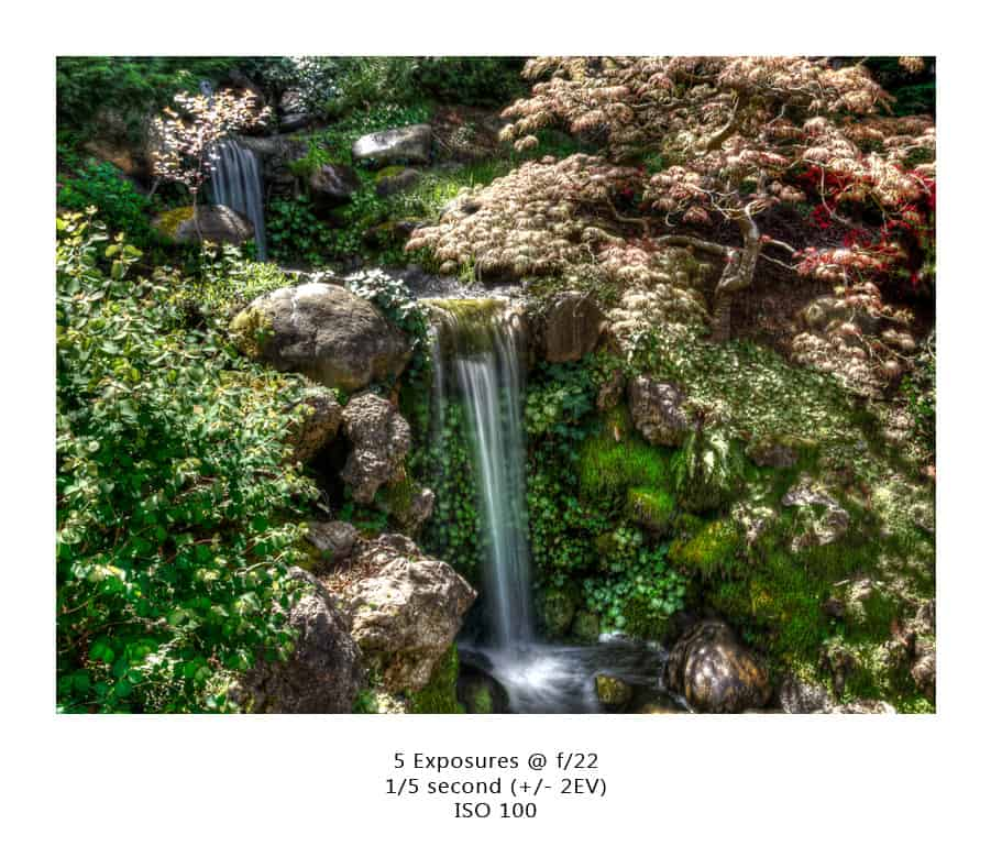 Some News and the Hakone Garden in Saratoga CA!