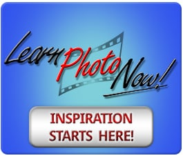The Face of Photo Training is Changing… Are You Ready?