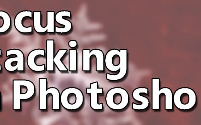 Focus Stacking in Photoshop
