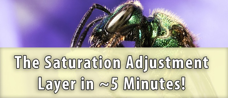 Saturation Adjustment Layer in Photoshop