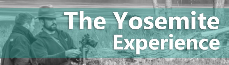 Yosemite Workshop Experience