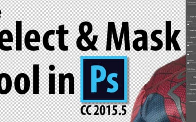 How to use the Select and Mask Tool in Photoshop