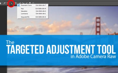 How To Use The Targeted Adjustment Tool