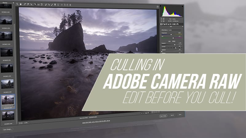 How to Cull Your Photos in Adobe Camera Raw
