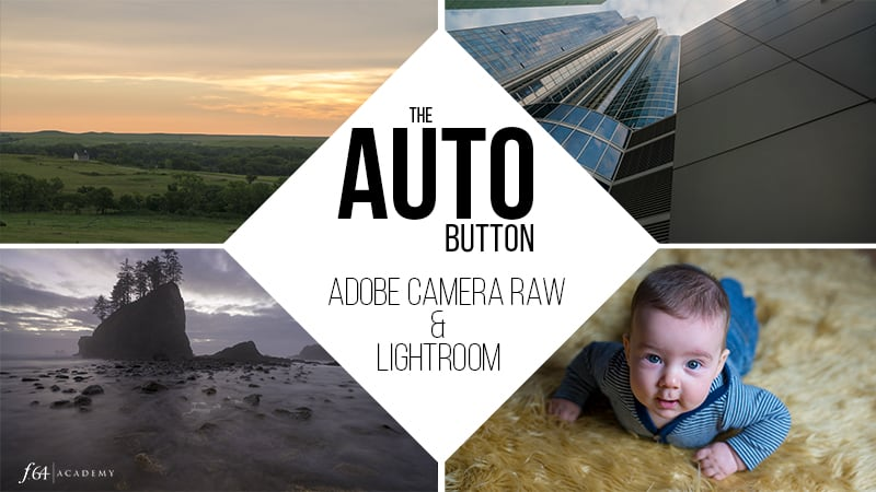 The Auto Button in ACR and Lightroom