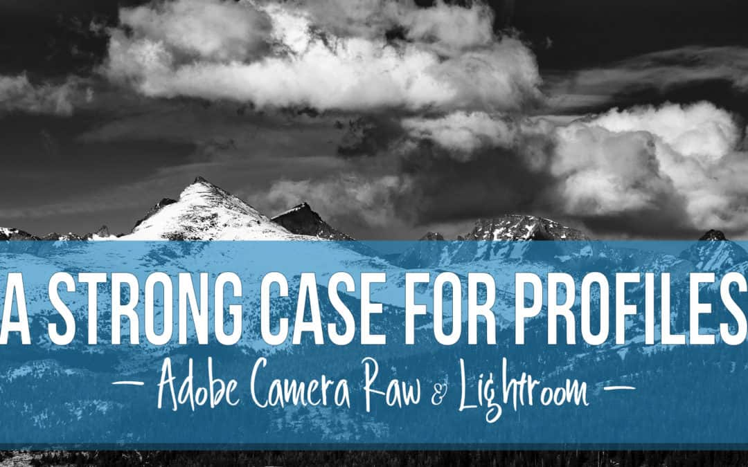 A Strong Case for Profiles for Adobe Camera Raw and Lightroom