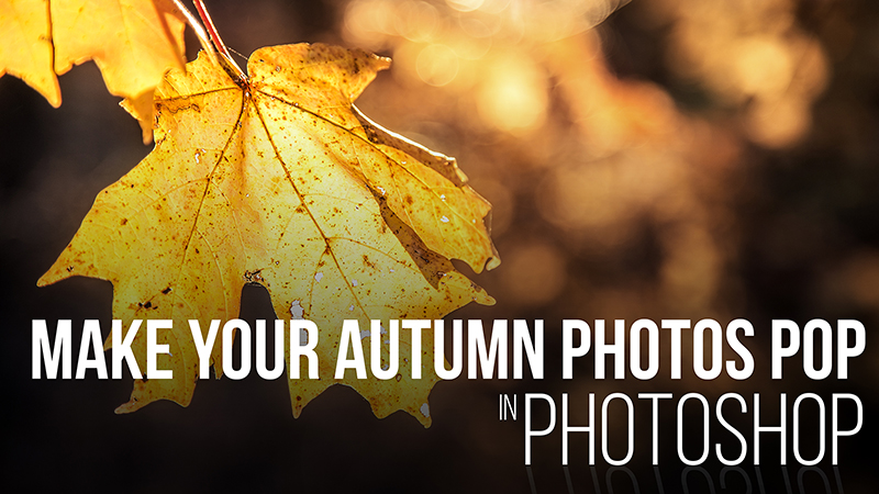 How to Make your Fall Colors Pop! [Video]