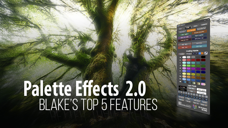 Palette Effects 2.0 Top 5 Features