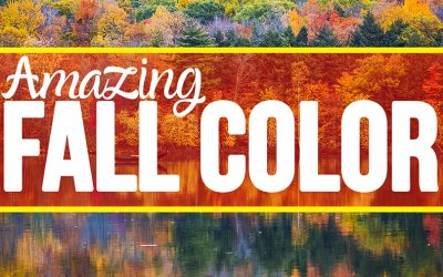 Amazing Color for Fall Photography Tips