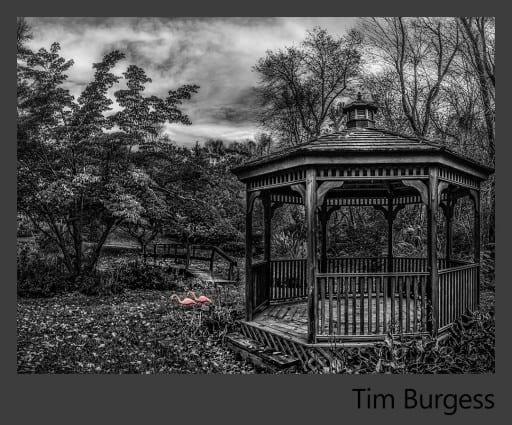 07a-Tim-Burgess
