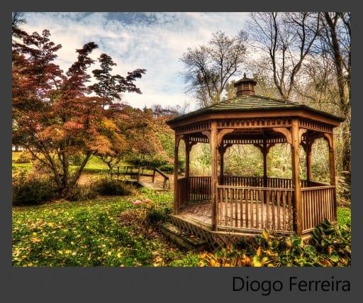 09a-Diogo-Ferreira