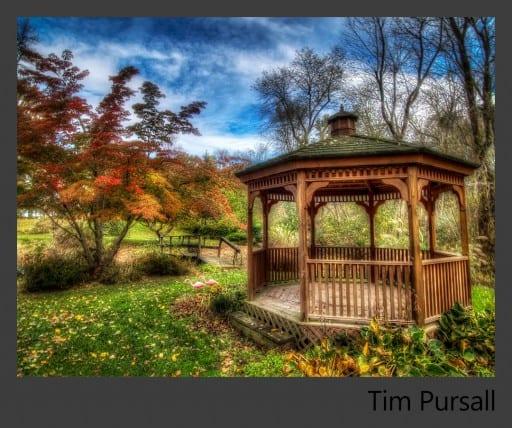 10a-Tim-Pursall