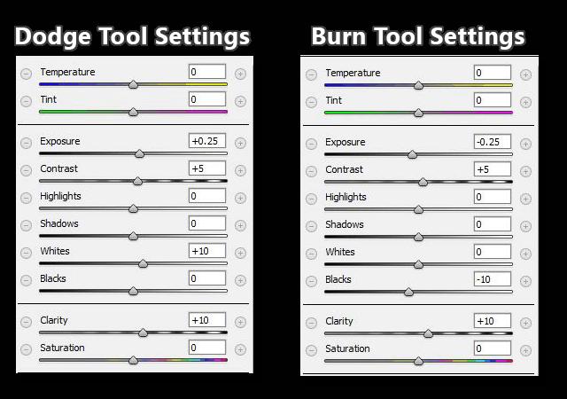 Dodging and Burning Adjustment Brush Settings