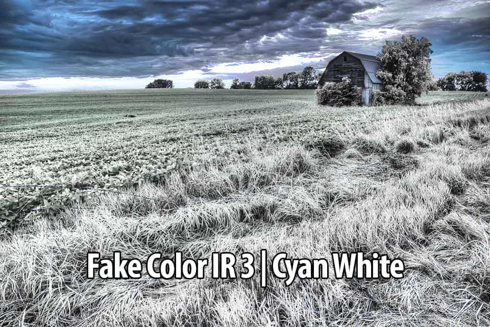 04 Fake Color 3 IR Filter Action - Infrared Photography Fake