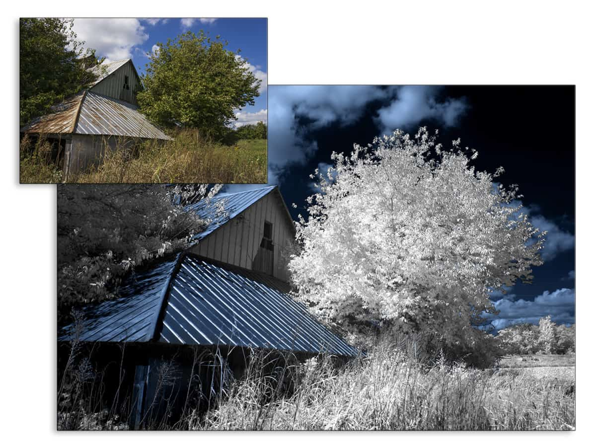 a6000 Infrared Photography Comparison