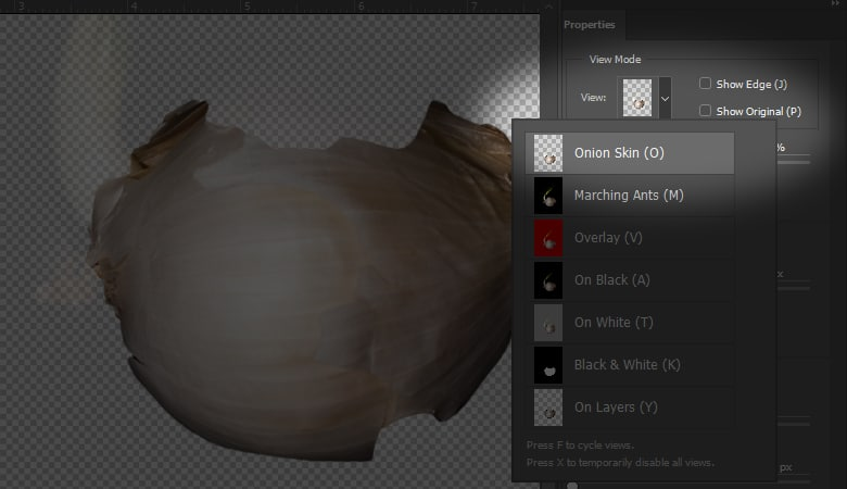 Select and Mask in Photoshop Onion Skin