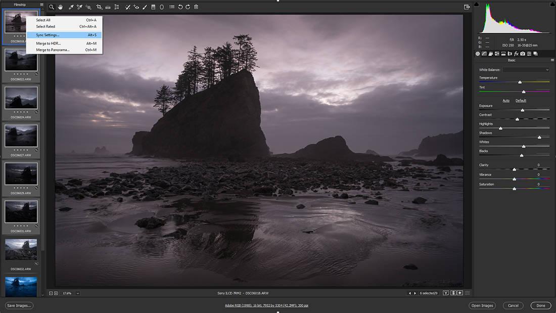 Adobe Camera Raw image setting syncing